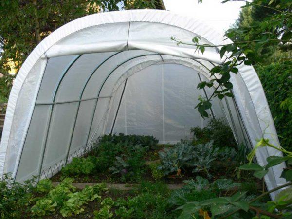 Steinbock Zelt als Gewächshauszelt