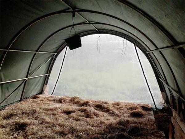 Blick im Inneren eines Steinbock Weidezelts auf den lichtdurchlässigen Türteil, der für angenehmes Licht im Zelt sorgt